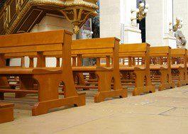 cardinal – Cath de Montauban (82)