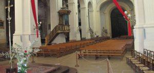 cathedrale de montauban