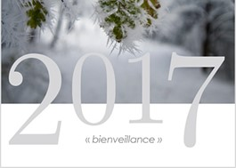 voeu 2017
